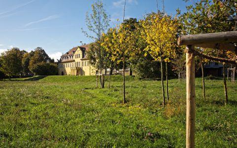 Arboretum Schloss Massenbach